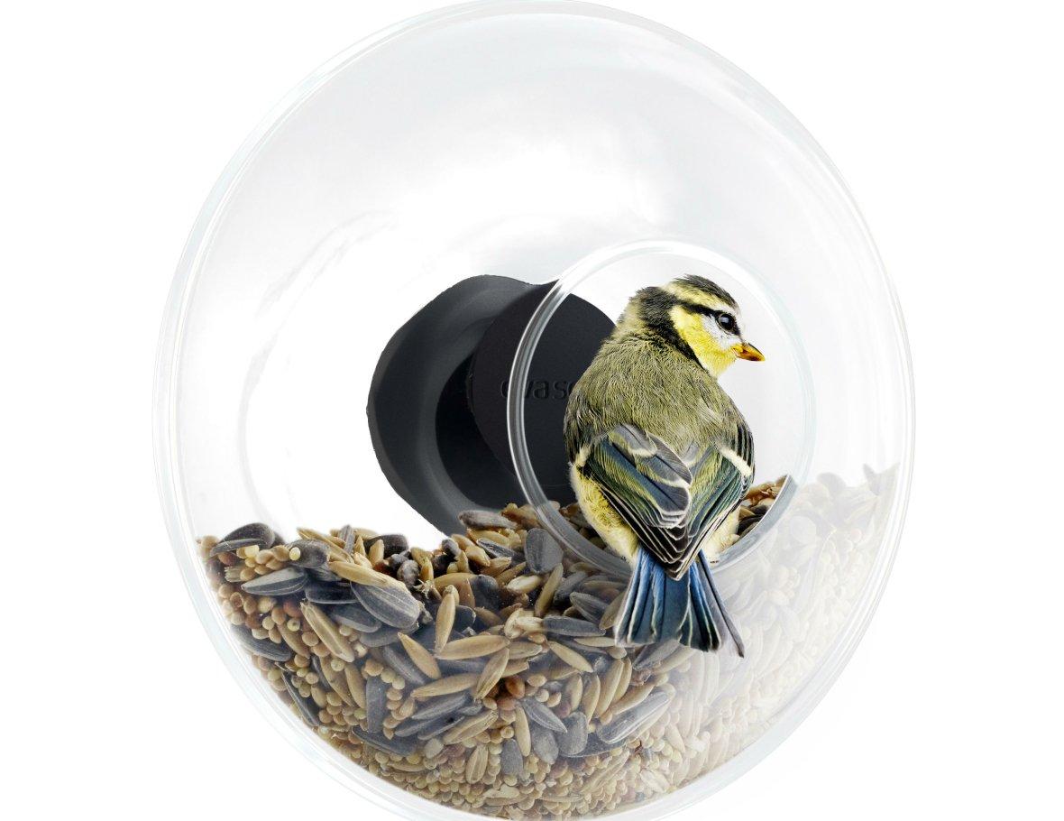 Raam vogelvoederhuisje