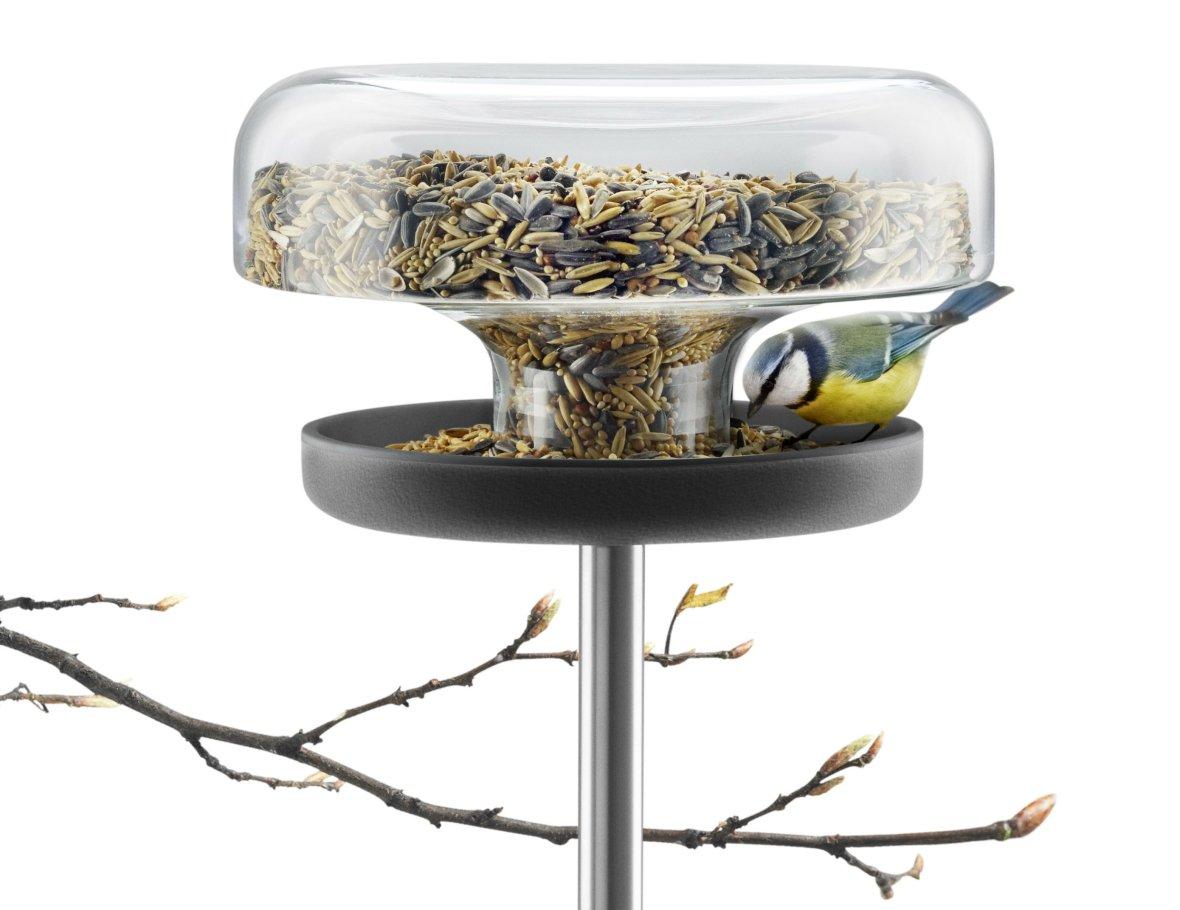 Voedertafel voor kleine vogels